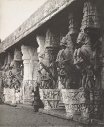 Madura [sic. Should read: View of the carved horse pillars in the Hall of a Thousand Pillars, Srirangam].